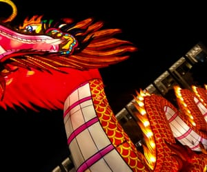 chinese new year, city, and colours image