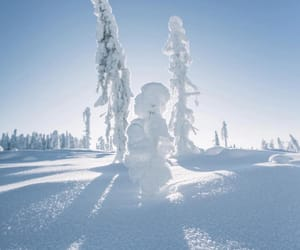 finland, winter, and nature image