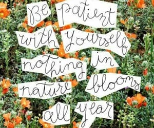 art, flowers, and frases image