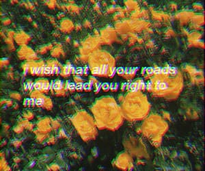 flowers, quotes, and Taylor Swift image