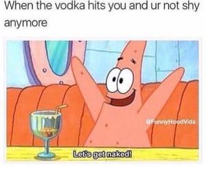 sarcasm, shy, and vodka image