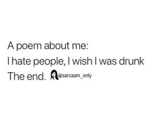 drunk, sarcasm, and hate people image