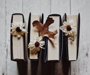book, alternative, and autumn image