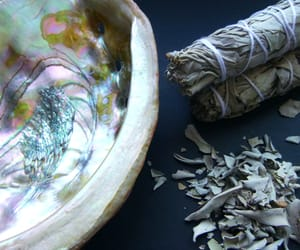 incense, nature, and white sage image