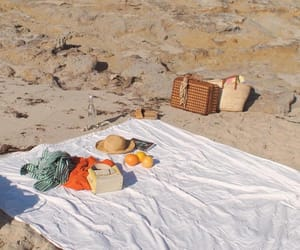 beach and picnic image