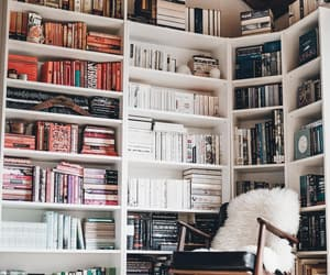 author, bookworm, and interior design image