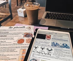 notes, coffee, and study image