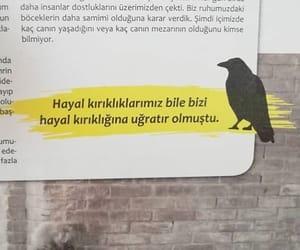 alıntı, türkçe sözler, and kara karga dergisi image
