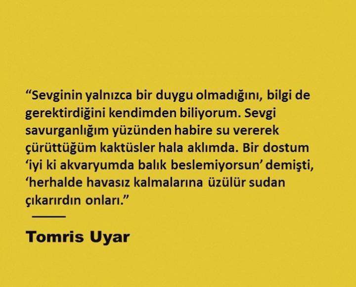 alıntı, tomris uyar, and türkçe sözler image