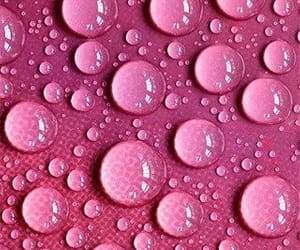 color, raindrops, and pink image