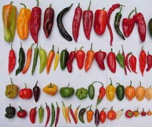 chile, méxico, and chili image
