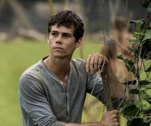 thomas, dylanobrien, and the maze runner image