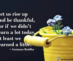 Buddha, thank you, and buddha quotes image
