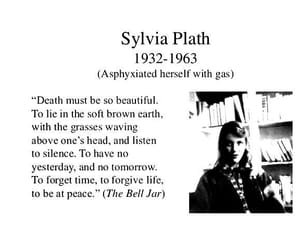 bell jar, plath, and poetry image