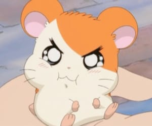 anime, hamtaro, and kawaii image