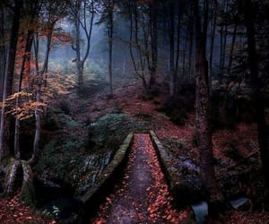 beautiful, Dream, and landscape image