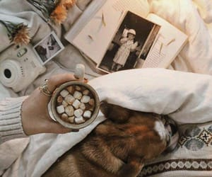 cozy, dog, and hot ​chocolate image