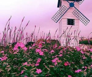 flowers, wildflowers, and windmill image