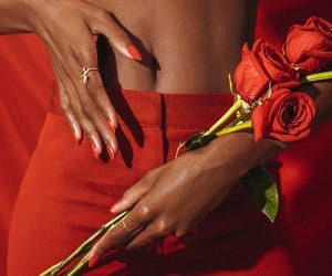 rose, fashion, and red image