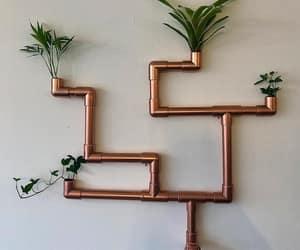 !, fresh, and plants image
