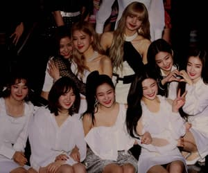 gif, red velvet, and park sooyoung image