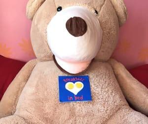 bear, bed, and teddy bear image