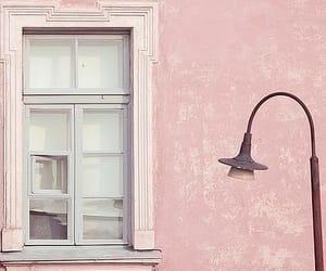 pastel, pastels, and rose image
