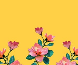 wallpaper, background, and flower image