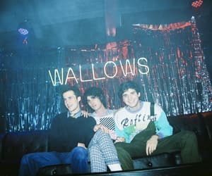 aesthetic, bands, and wallows image