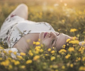 backlight, field of flowers, and softness image