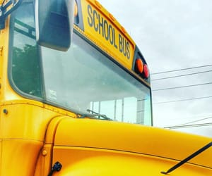 bus, school, and yellow image