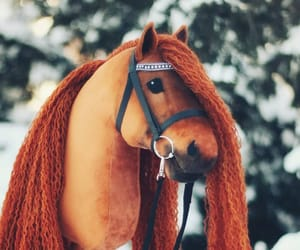 creative, equestrian, and horses image