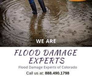 flood damage experts and flood clean up services image