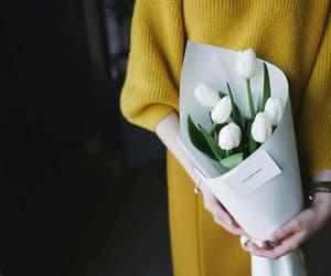 flowers, tulip, and ًورد image