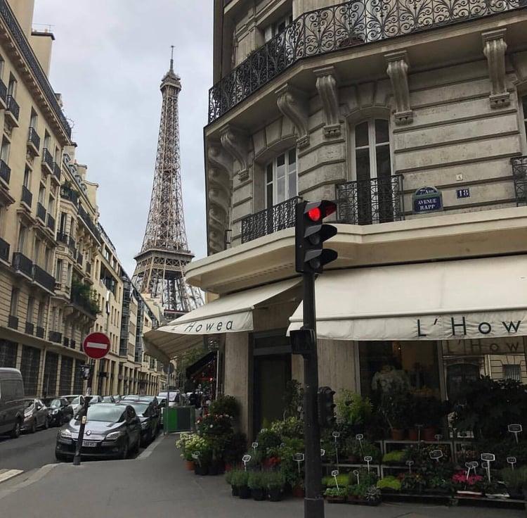 article, paris, and eifeltower image
