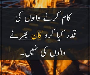 qoute, urdushyri, and urdu image