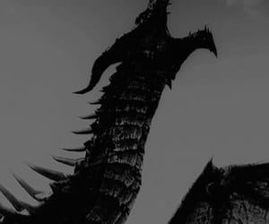 dragon, black and white, and fantasy image