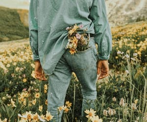flowers, nature, and boy image