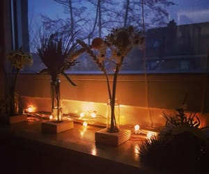 flower, lights, and myroom image