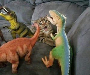 cat, gato, and dinosaurios image