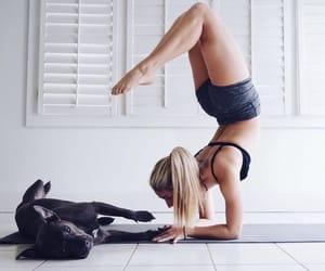 dog, white, and girl image