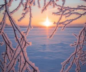 cold, frosty, and icy image