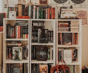 aesthetic, article, and bookworm image
