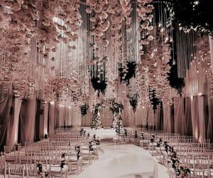 wedding, pink, and rose image