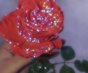 flowers, glitter, and rose image