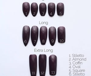 guide, nails, and shapes image