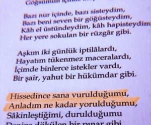 siir, türkçe, and kitap yazıları image