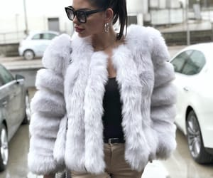 fur, white, and volpe image
