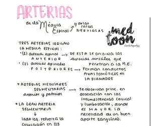 greys anatomy, medicine, and salud image