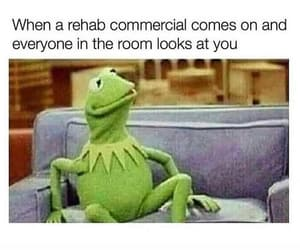 commercial, rehab, and kermit the frog image